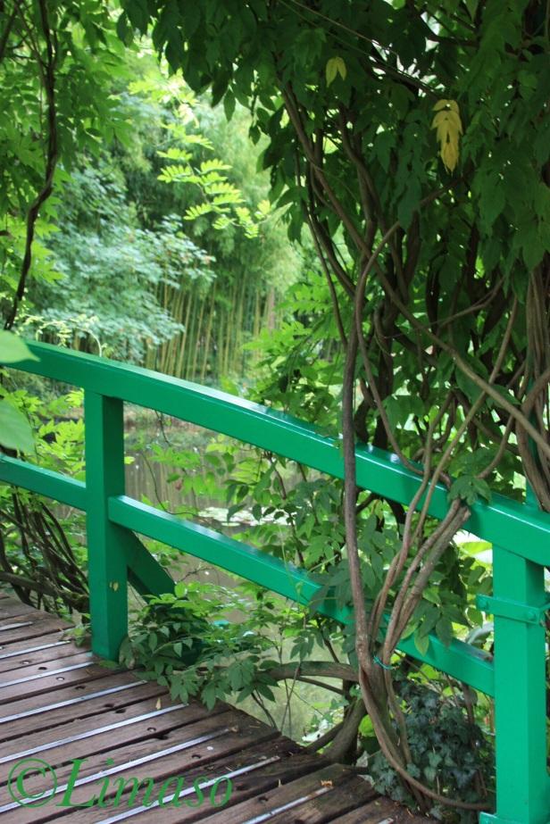 Die grüne Brücke über den Seerosenteich. Auf den alten Gemälden ist sie nicht grün.