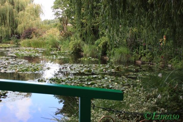 Blick von der Grünen Brücke