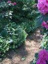 Schattengarten Wege